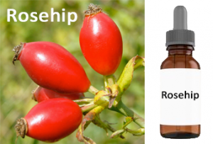 roseship essential oil